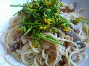 菜の花のペペロンチーノ